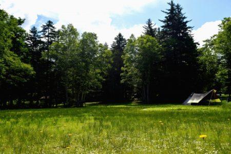 夏休み,おすすめ,穴場,茨城,子連れ,観光,ランキング